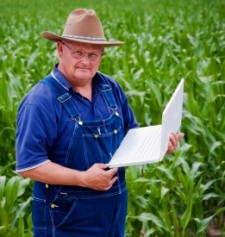 Google Farmer Update Hits Content Sites HARD… including EzineArticles.com