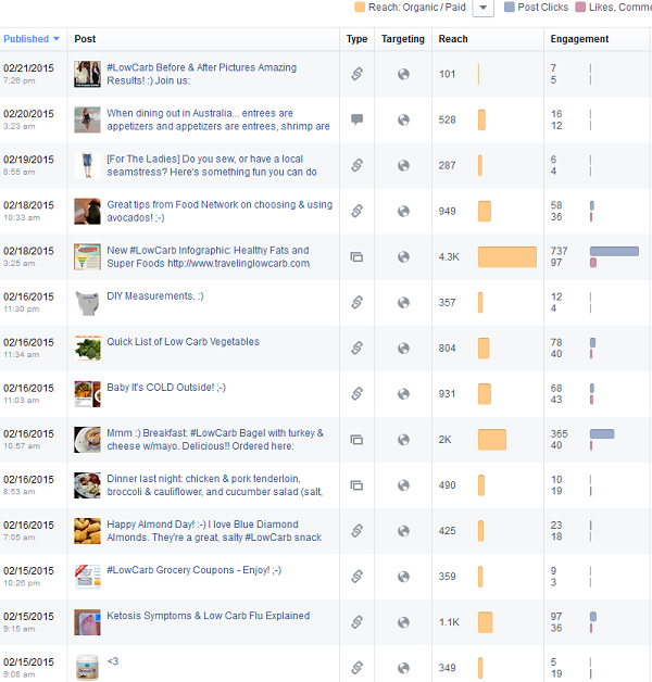 Low Carb Page Facebook Insights