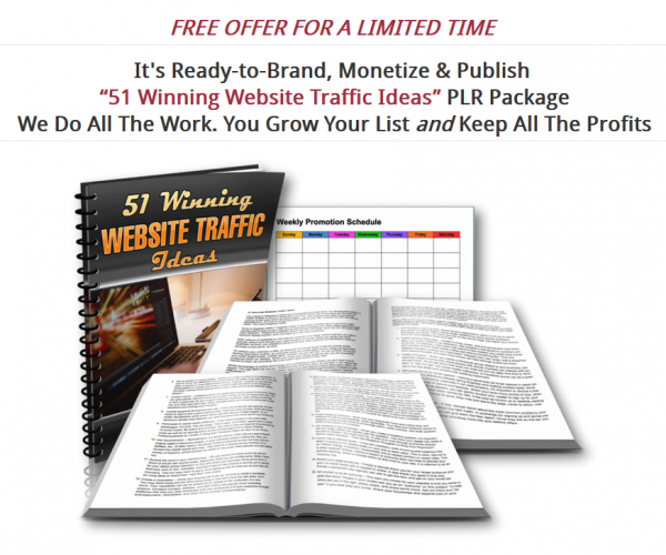 Free PLR: Website Traffic Ideas